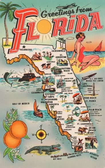 Vintage Florida post card