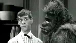 Sammy Petrillo and gorilla in Bela Lugosi Meets a Brooklyn Gorilla