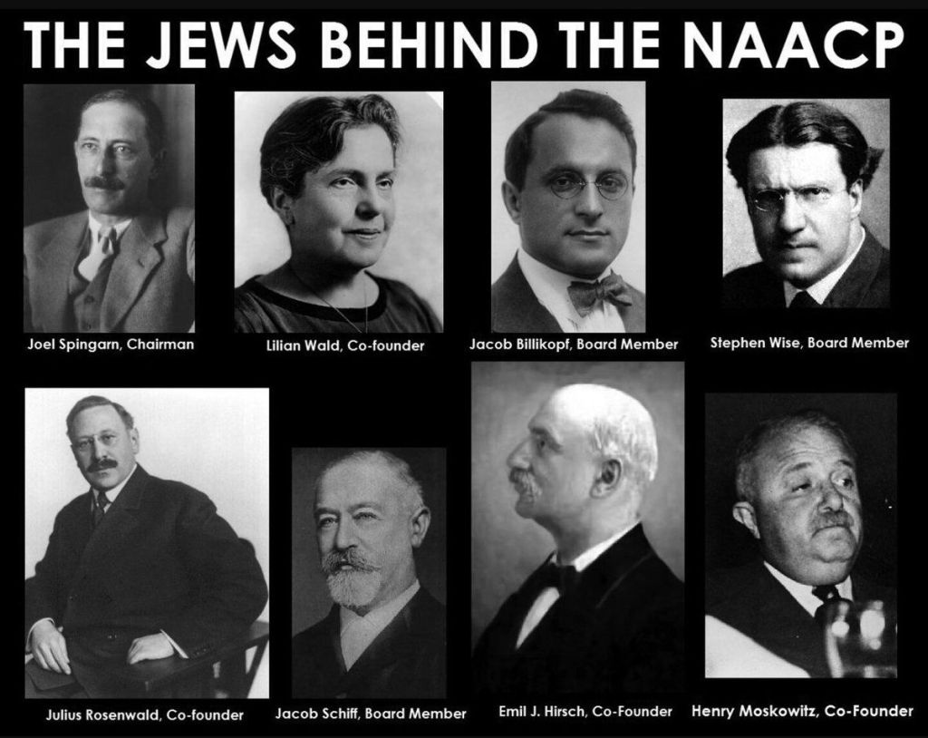 The Jews behind the NAACP