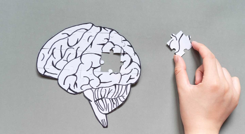 Brain as jigsaw puzzle