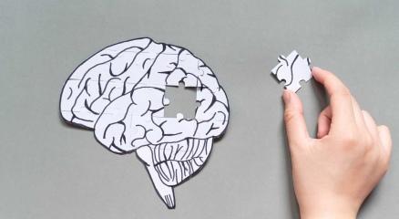 Brain as jigsaw puzzle